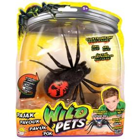 Wild Pets - Interaktywny Pająk Creepster 29016 A