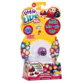 Little Live Pets - Biedronka i biedroneczka Promyczek 28447 03