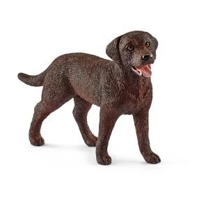 Schleich - Rasa Labrador Retrieve - Suczka 13834