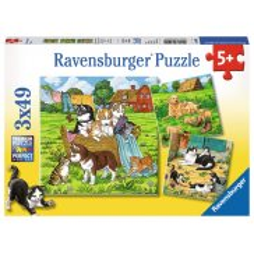 Ravensburger - Puzzle Słodkie pieski i kotki 3 x 49 elem. 080021
