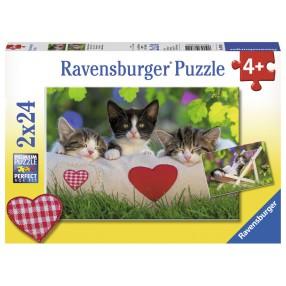 Ravensburger - Puzzle Śpiące kocięta 2x24 elem. 078011