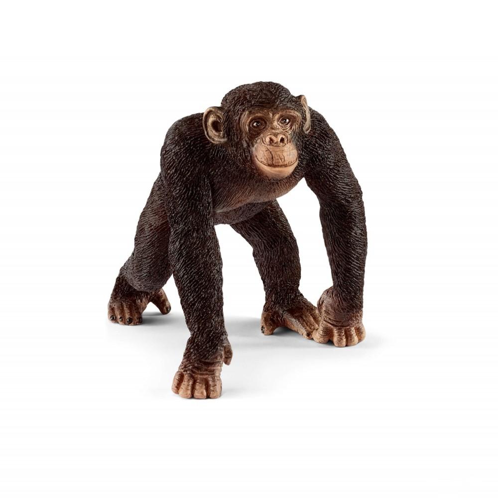 Schleich - Szympans - samiec 14817