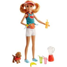 Barbie - Lalka Siostra Stacie i zwierzątko FHP63