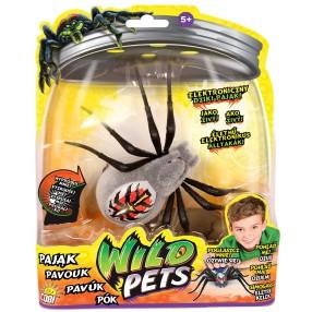 Wild Pets - Interaktywny Pająk Wolfgang 29016 D