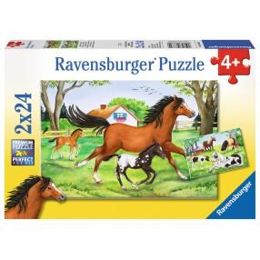 Ravensburger - Puzzle Świat Koni 2x24 elem. 088829
