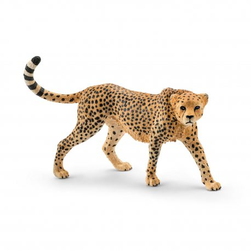 Schleich - Gepard - Samica 14746