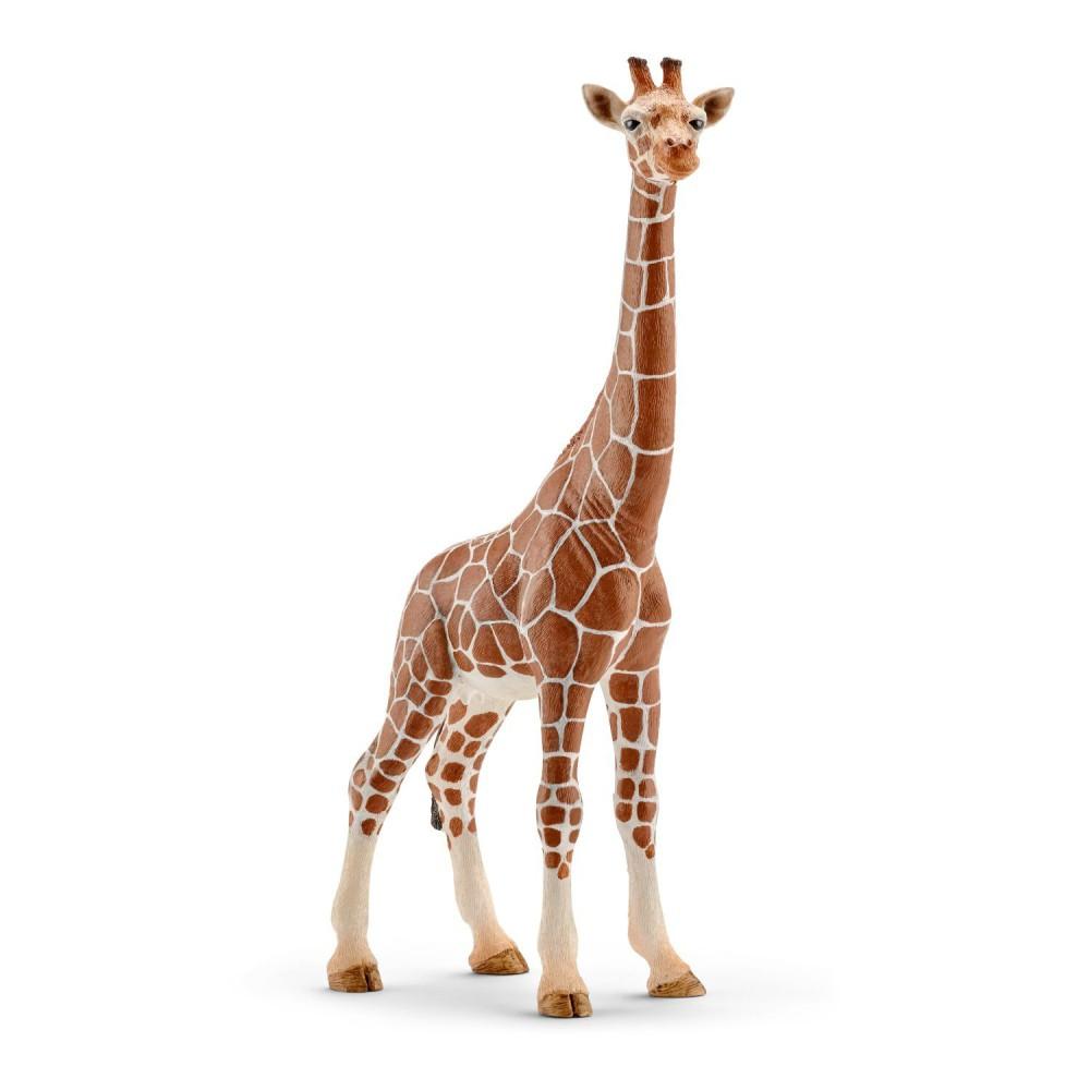 Schleich - Żyrafa - Samica 14750