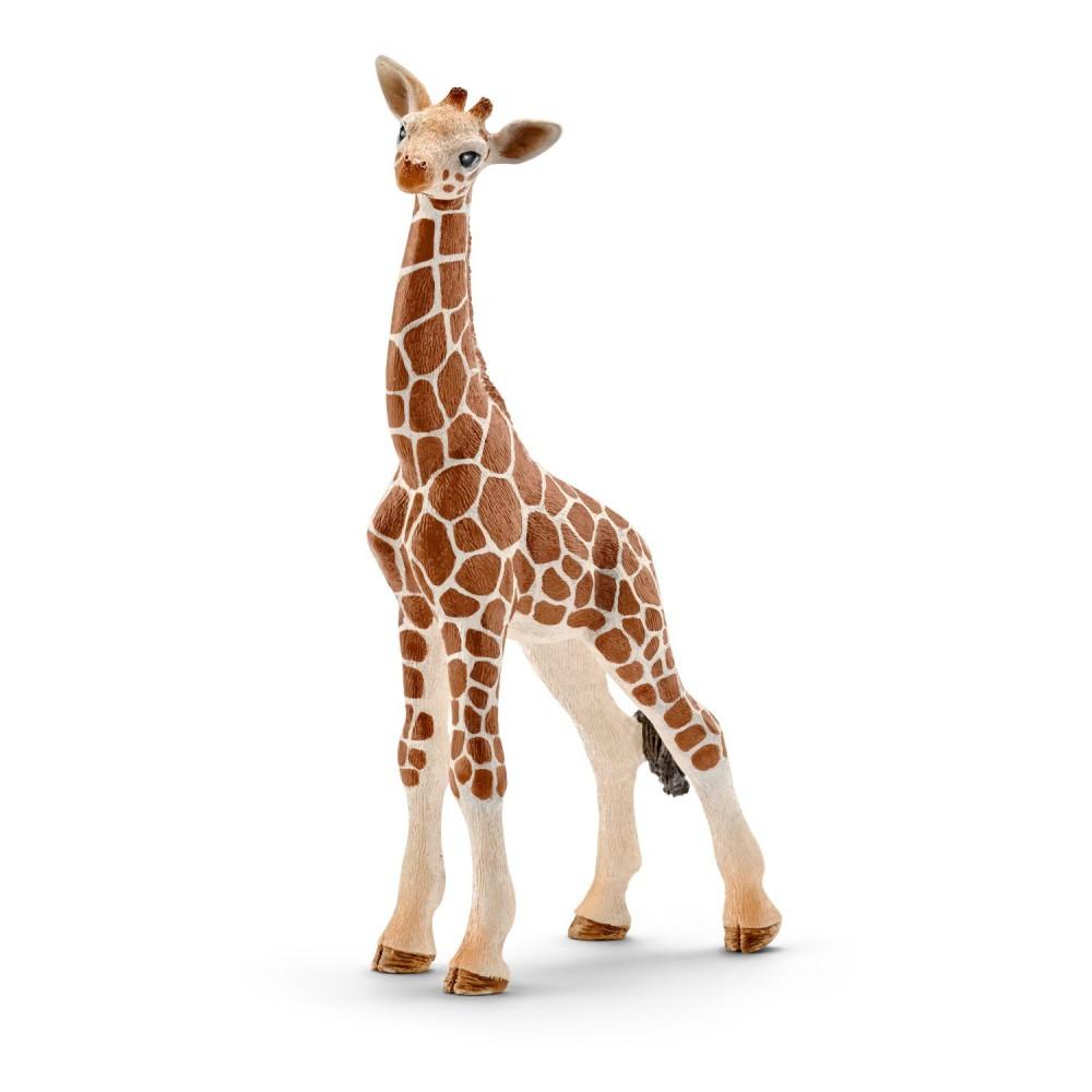 Schleich - Żyrafa - Młoda 14751