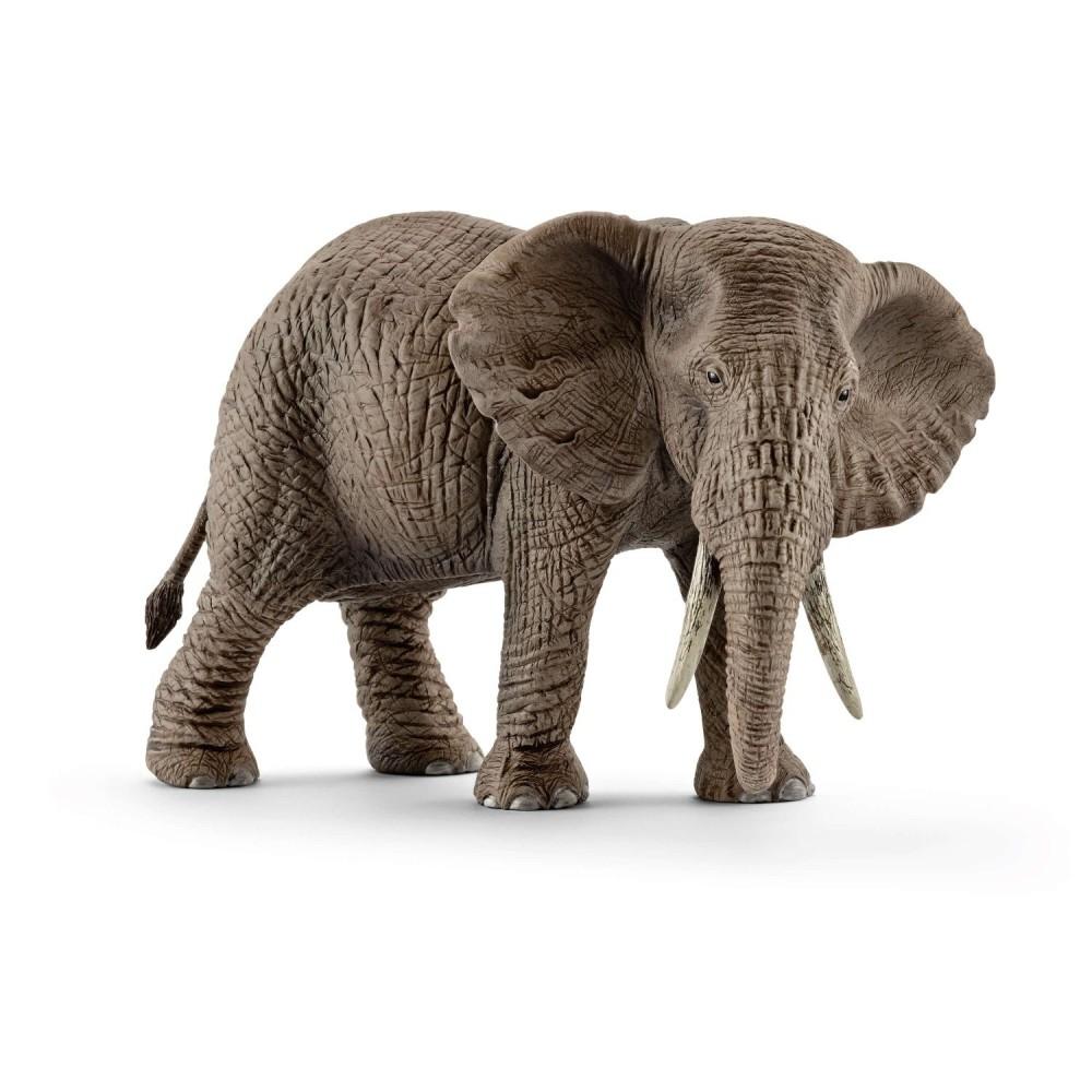 Schleich - Słoń Afrykański - Samica 14761