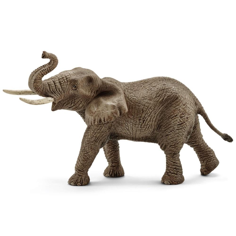 Schleich - Słoń Afrykański - Samiec 14762