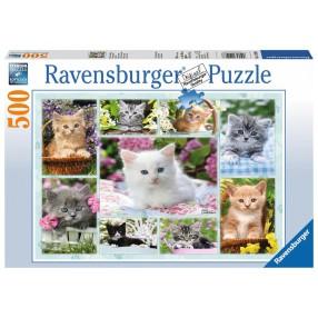 Ravensburger - Puzzle Kotek w koszyku 500 elem. 141968