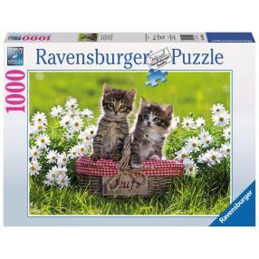 Ravensburger - Puzzle Koci Piknik 1000 elem. 194803