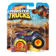 Hot Wheels Monster Truck - Metalowy pojazd PsychoDelic GBT91