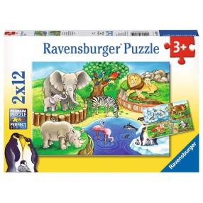 Ravensburger - Puzzle Zwierzęta w ZOO 2 x 12 elem. 076024