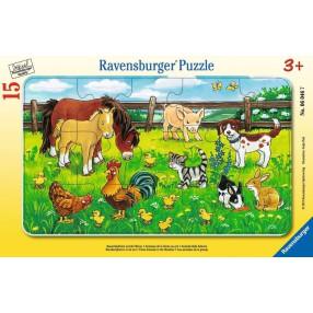 Ravensburger - Puzzle Zwierzęta domowe 15 elem. 060467