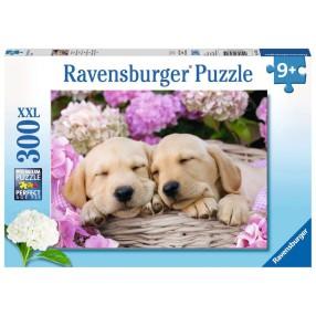 Ravensburger - Puzzle XXL Pieski 300 elem. 132355