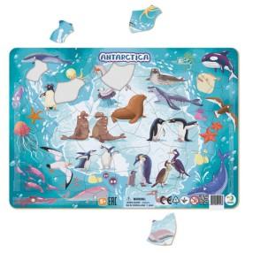 Dodo - Puzzle ramkowe Antarktyda 53 el. 300176