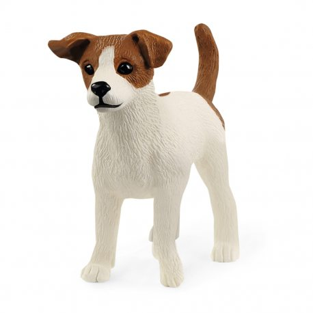 Schleich - Rasa Jack Russell Terrier - Suczka 13916