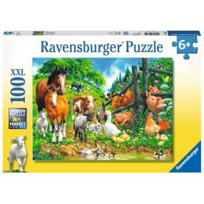 Ravensburger - Puzzle XXL Wiejskie zwierzaki 100 elem. 106899