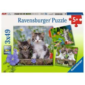 Ravensburger - Puzzle Kotki 3x49 elem. 080465