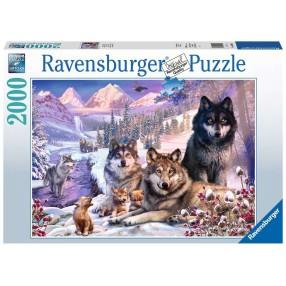 Ravensburger - Puzzle Wilki w śniegu 2000 elem. 160129