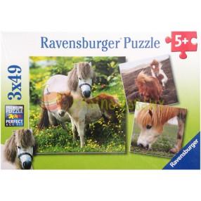 fullsize/ravensburger-094288-01.jpg