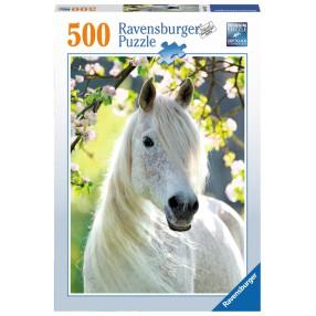Ravensburger - Puzzle Biały koń 500 elem. 147267