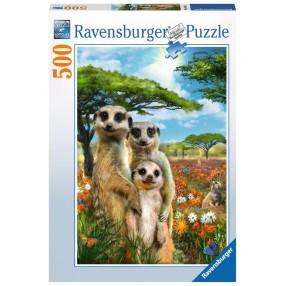 Ravensburger - Puzzle Wiosenne surykatki 500 elem. 147441