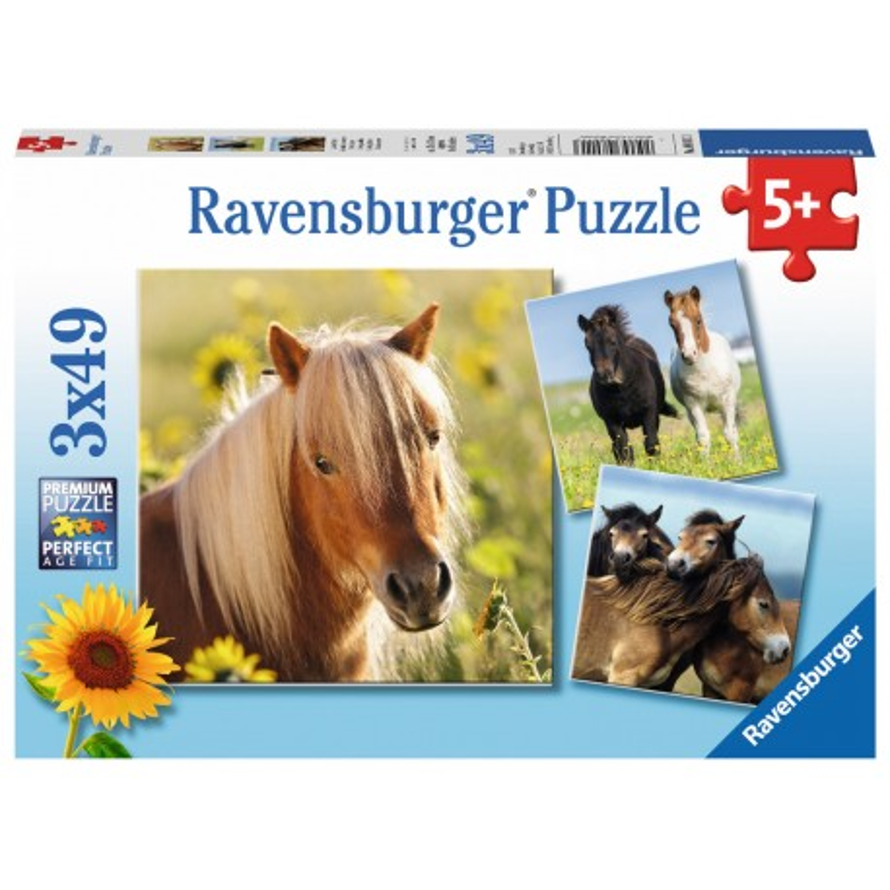 Ravensburger - Puzzle Kochane konie 3 x 49 elem. 080113
