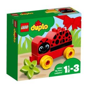 LEGO Duplo - Moja pierwsza biedronka 10859