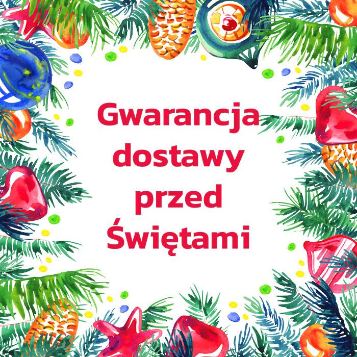 Gwarancja dostawt przed Świętami